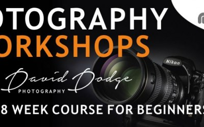 Brand New Workshops for Beginners
